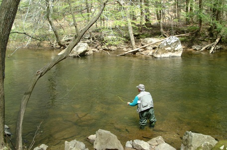 Fly_fisherman