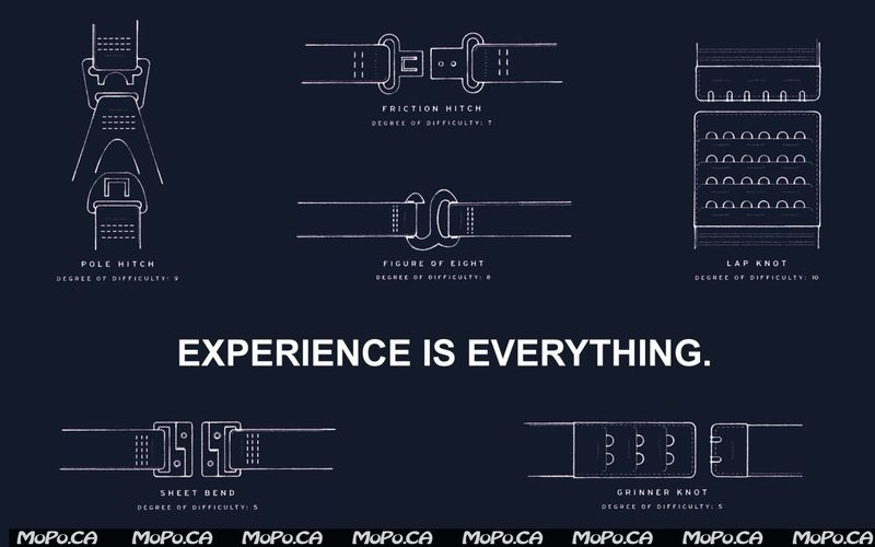 Experience-is-everything-786519