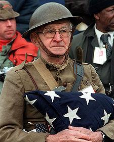 225px-Veterans_day