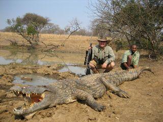 Nile-croc4