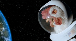 Space chicken