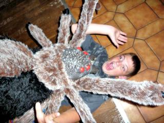 Man eating spider
