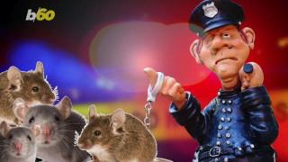 Marijuana mice